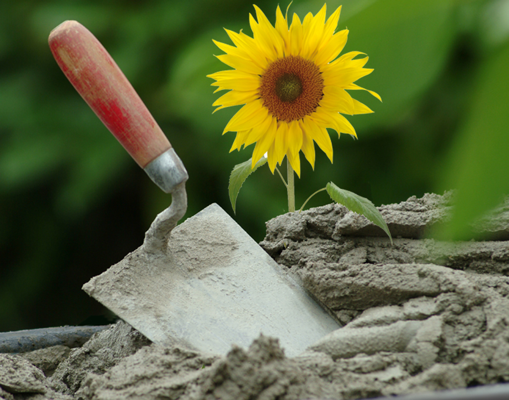 Standard Moertelkelle Mit Sonnenblume
